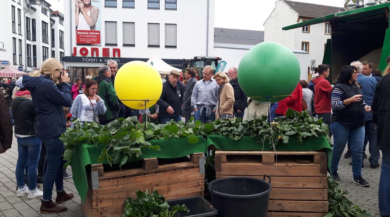euskirchener_knollenfest